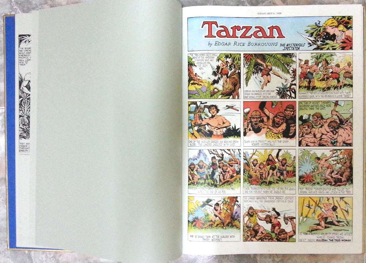 TARZAN BY HOGARTH PUBLISHED BY CHELSEA HOUSE 